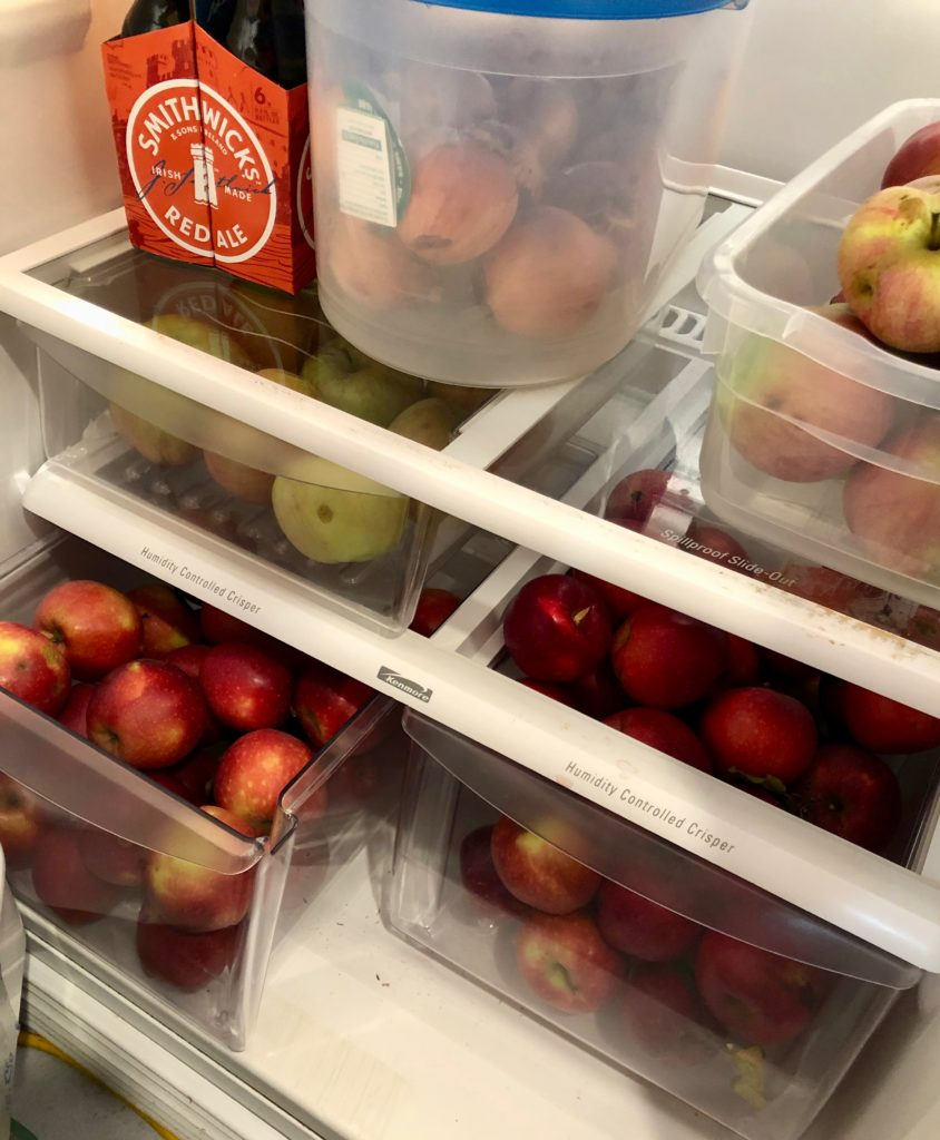 Apples in Stored in Fridge - One Day Woman